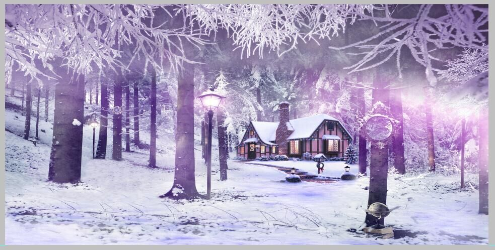 Winter Snow Christmas village vinyl photography backdrops 12x6ft vinyl cloth children photo studio background for sale  L-896