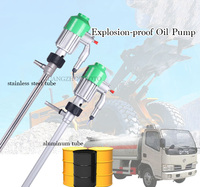 120W Motor 304 Stainless Steel Oil Pump For Corrosive Liquids Electrical Explosion Proof Barrel Pump Methanol