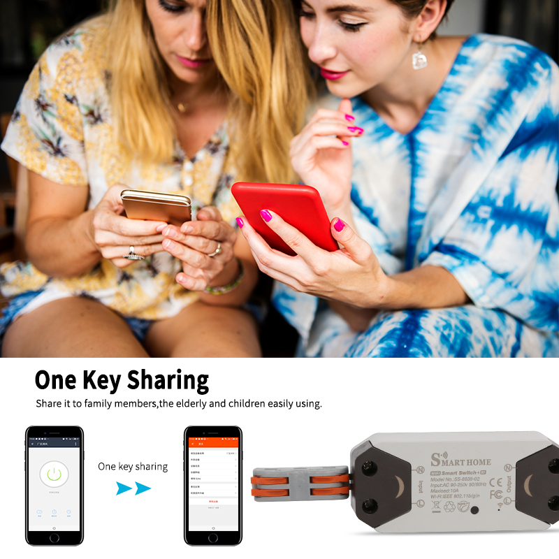 Smart Life Switch with RF Remote Control For DIY Home Devices to Work With  Alexa Google Home IFTTT