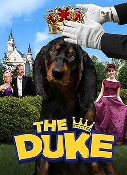 《亿万神犬》1999年英国,加拿大喜剧,剧情,家庭电影在线观看