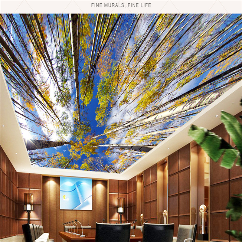 3d Sky Ceiling Wallpaper 3d Ceiling Murals Fresh Natural Autumn Scenery Wallpapers