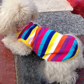 Kolorowe wiosna koszule dla psów odzież dla zwierząt domowych dla małych pies słodkie letnie ubranie dla psa ubrania dla psów Puppy strój na ubrania dla psów 39S6 tanie i dobre opinie 100 Cotton Mały pies IDEPET Spring Summer dog clothes
