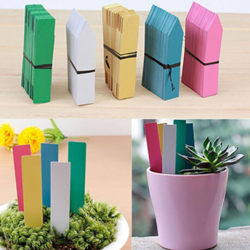 100 PCS Garden Flower Pot Plastic Tags Reusable PVC Plants Hang Tag Labels Tree Fruits Seedling Sign Classification Tools