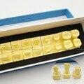 Nova Chegada 1:1 Modelo Dos Dentes Permanentes Com Base dental dente dentes dentista odontologia modelo anatômico anatomia