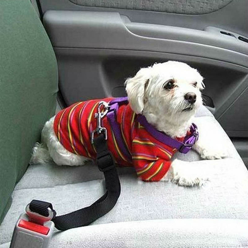 1 Pcs Pet Dog Adjustable Car Safety Seat Belt Dogs Pets Seatbelt Cat Dog Carriers Leads Belts Dog Accessories