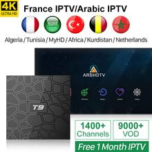 IPTV France Arabic IPTV Turkey Free 1 Month IPTV T9 Android 8.1 TV Box RK3328 Quad Core Belgium Morocco IP TV Netherlands IP TV