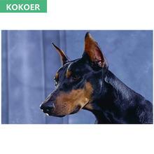 Полный алмазная вышивка 5d живопись собака породы Доберман пинчер