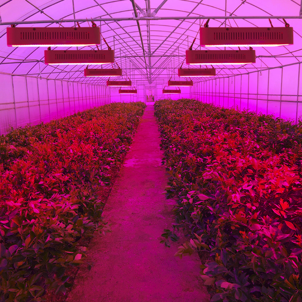 series power veg full product lights platinum plant store high light grow advanced dual led spectrum band flower