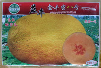 Free Shipping Garden Fruit Hami melon Seeds, 50g/bag Yi feng jinfeng 8 hami melon home & garden Plant Fruit Seeds