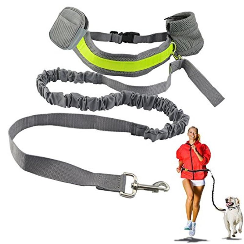 Elastic Dog Collar
