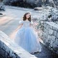2015 novo vestido de tutu Elsa rainha do gelo marca vestido para a menina princesa cinderela meninas traje crianças roupas c287