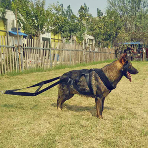 Image 5 - Dog Weight Pulling Harness Strong Nylon Pets Harness for German Shepherd K9 Large Dogs Agility Product Dog Training Products