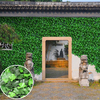 Fire Proof Anti UV Artificial Hedge Plants Fake Leaves 50X50cm Privacy Fencing Foliage Leaf For Wedding