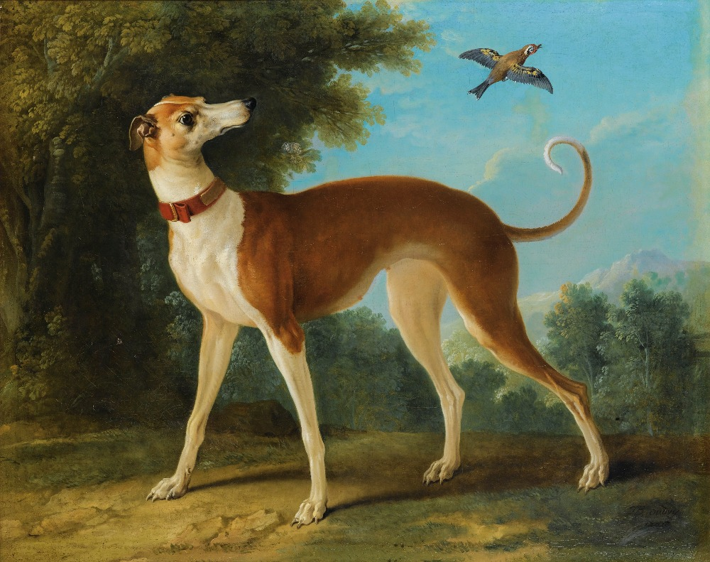 Oil Painting Reproduction,handmade oil painting,Greyhound in a landscape by Jean-Baptiste Oudry,Animal,Museum quaity