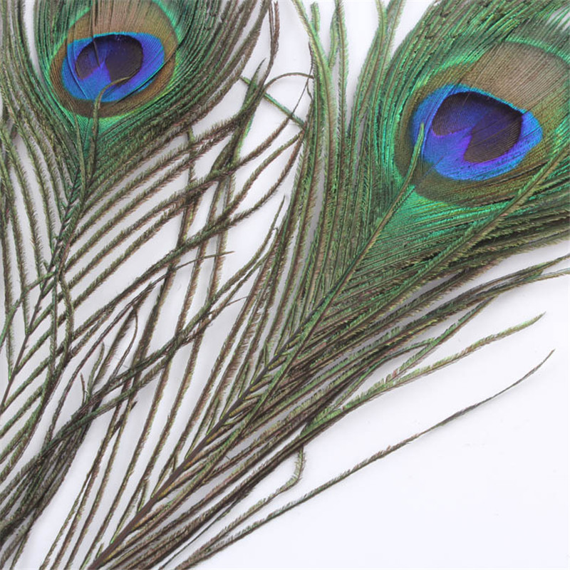 10 Pcs lot Bulk Beautiful Peacock Feather Blue Eyes Feathers For DIY Clothing Hat Dress Jewelry Wedding Party Decoration in Feather from Home Garden