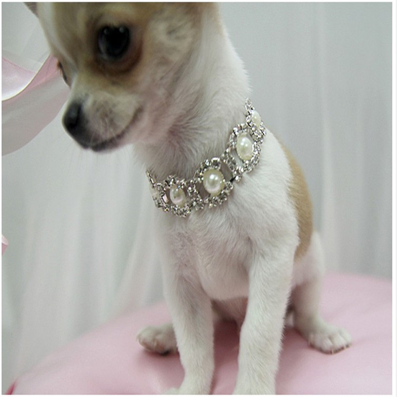 3bdec210c61 Aliexpress.com   Buy Rhinestone Pearl Necklace Dog Collar Alloy Diamond Pet  Collars Mascotas Dog Accessories Leashes For Little Dogs Pet Supplies from  ...