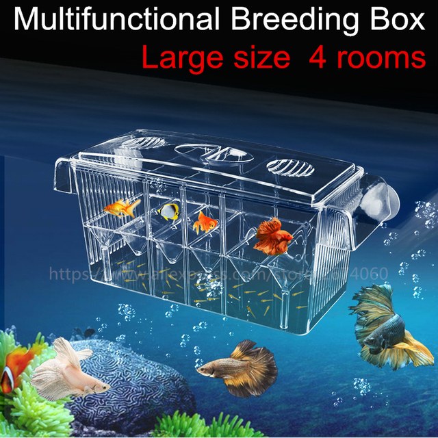 4 Rooms High Clear Fish Breeding Box Aquarium Breeder Box