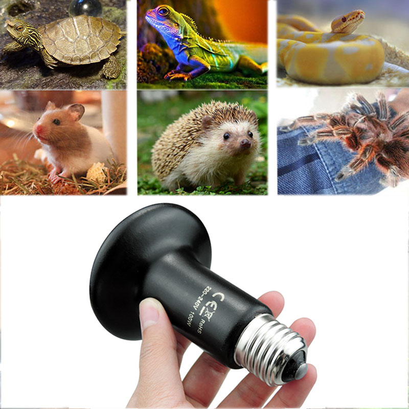 10 Pcs Pet Animals Heating Light 25W 50W 75W 100W Mini Infrared Ceramic Emitter Heat Bulb Black For Reptile Pet Brooder Lamp