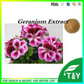 geranium extract dmaa/geranium extract/geranium extract powder 600g/lot