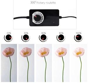Image 5 - CY boîte à lumière + gradateur, boîte à photographie Portable, Soft box avec Studio de Photo, 120*100 CM