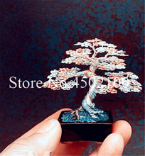 50 Pcs Rainbow Juniper Bonsai Indoor Tree Garden Potted Flowers Office Mini Bonsai Evergreen plant Purify Air Absorb Harmfu