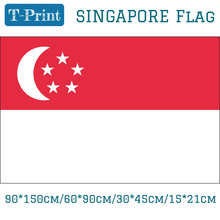 Free shipping 15*21cm 90*150cm 60*90cm 30*45cm Car Flag Hanging Singapore National