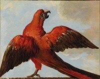 Yağlıboya resim Üreme, el yapımı yağlıboya, Jean-Baptiste TARAFıNDAN Parrot_with_Open_Wings Oudry, Anima, Müze quaity