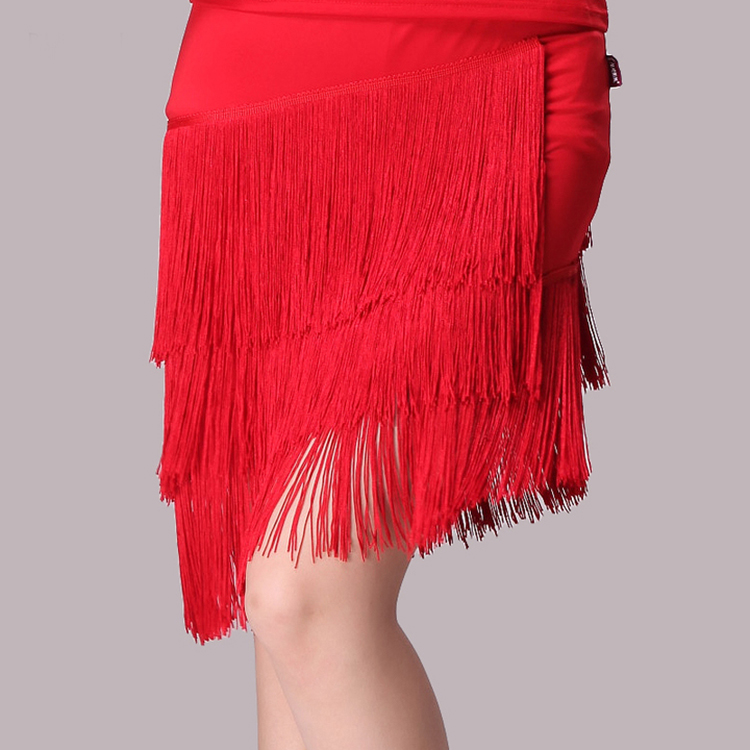 Latin Tap Dance Dress (2)