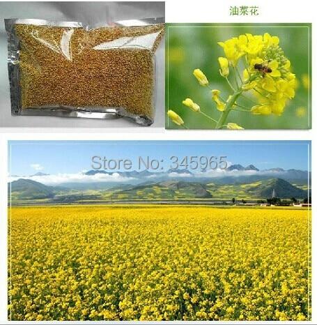 transport gratuit de hrană pentru animale de origine animală flori pudră albină hrana pentru animale, 500 gsm / o lira