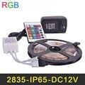 À prova d' água IP65 RGB LED Strip 60 LEDs/m 5 M/lote SMD2835 2A fonte de Alimentação DC12V IR Controle Remoto Natal Tira RGB Lâmpadas