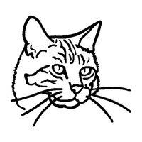12.7*13.7CM Cat Head Classic Cartoon Character Car Sticker Decoration Window Decal Black/Silver C4-0670