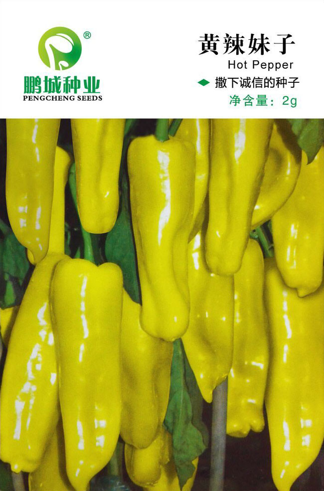 Vegetable seeds yellow spicy girl yellow pepper spicy spicy market selling 2 g / bag