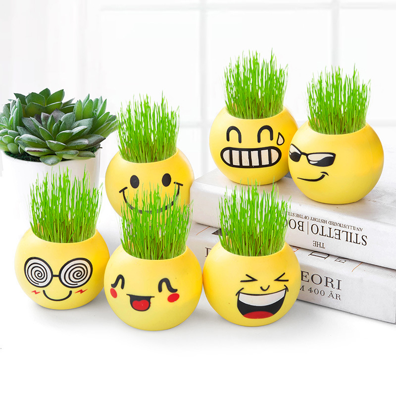 1PC Expression Long Grass Head Doll Micro Landscape DIY Mini Plant Pot Decoration Grass Planting Potted Crafts U3