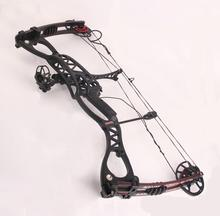 black RH&LF hand Hunting Bow arrow Set, right and left handed  Caesar Compound Bow,bow And Archery Set