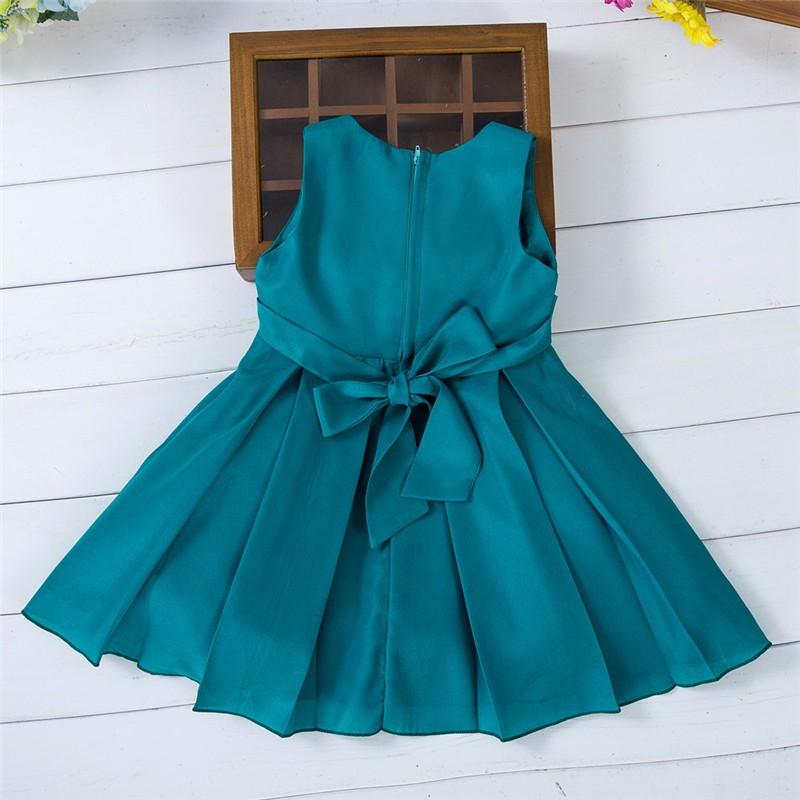 Newborn Birthday Dresses (10)