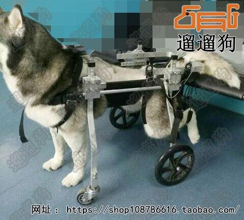 Fauteuil roulant pour animaux de compagnie handicapés/grand scooter pour chien/entraîneur de rééducation pour chien paralysé/jambe arrière pour animaux de compagnie à quatre roues
