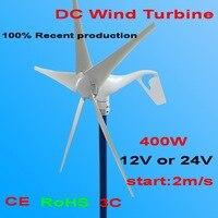 300 Wát Wind Turbine Phát Điện 12 V hoặc 24 V DC 2.0 mét/giây Gió Thấp Bắt Đầu Tốc Độ, 5 blade