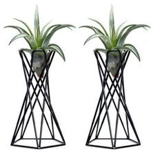 Pack of 2 Tabletop Air Plant Holder Stands Container Tillandsia Stand Home Decor