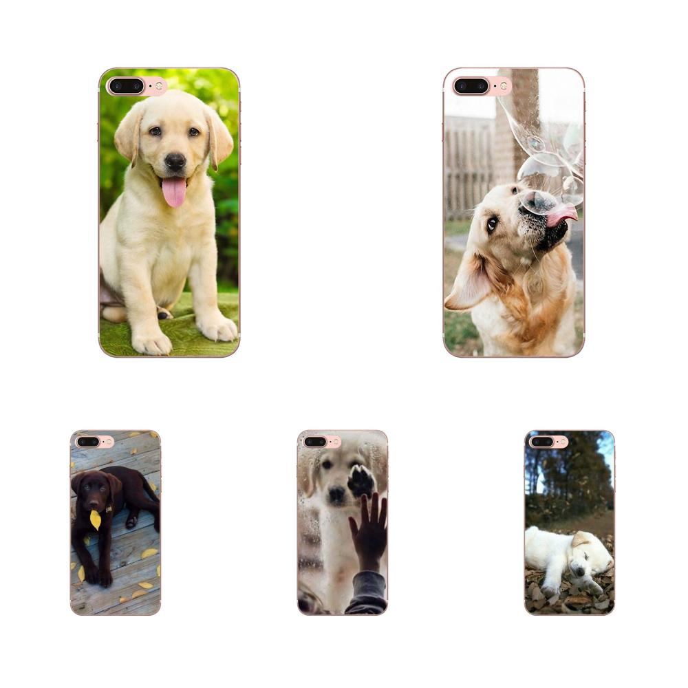 Soft Coque For <font><b>Galaxy</b></font> <font><b>A3</b></font> A5 A7 A8 A9 A9S On5 On7 Plus Pro Star 2015 2016 <font><b>2017</b></font> 2018 Labrador Puppies <font><b>Dog</b></font> image