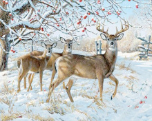 5d diy deer Snow scene gift diamond Embroidery diamant Mosaic  painting cross stith full Patterns Rhinestones