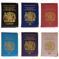 Fashion Faux Leather Passport ID Credit Card Cover Holder Case Travel Protector