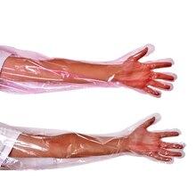 100 Pcs Animal Surgery Gloves Disposable Gloves Soft Veterinary Exam medical Semen gloves For Farm Animald15