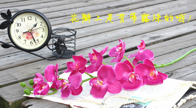 Factory outlets] with dew Phalaenopsis artificial flowers simulation flower factory opened with wedding housewarming