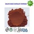 500g envío libre de Alta calidad anti envejecimiento polvo de extracto De semilla de Uva en polvo 95% OPC