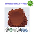 500g free shipping High quality anti aging powder Grape seed extract powder 95% OPC