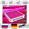 Full Spectrum LED Grow Light 120W 216W 300W 400W 600W 780W 1200W Led Plant Light For