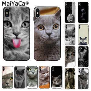 MaiYaCa Cute british shorthair cat Novelty Phone Case Cover for Apple iphone 11 pro 8 7 66S Plus X XS MAX 5S SE XR Cover(China)