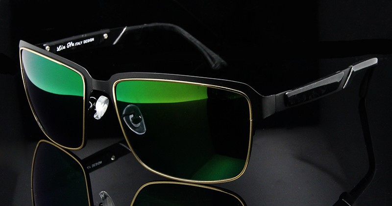 Polarized Sunglasses (14)