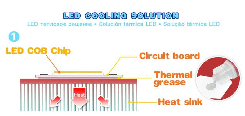 p1-radiator_06