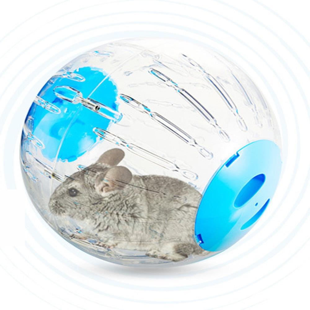 Do mice actually like exercise balls? : PetMice